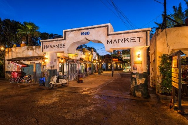 Harambe Village Marketplace