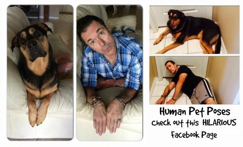 Human Pet Poses