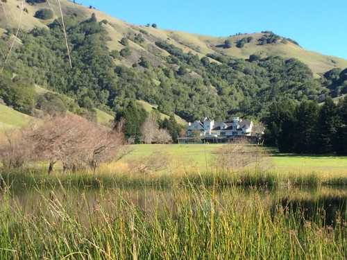 Lake Ewok at Skywalker Ranch with the Main House in the background.