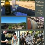 O'Brien Winery