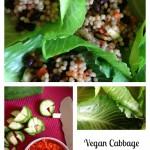 VeganCabbageStuffedwithVeggies and Couscous