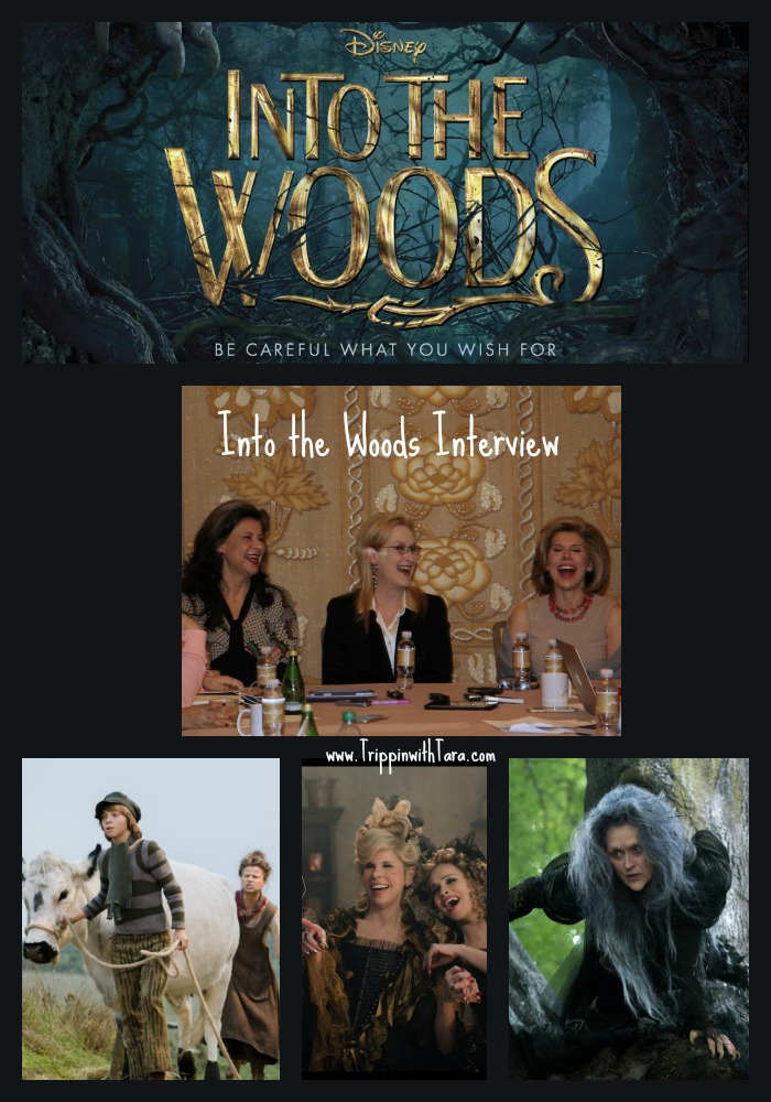 Meryl Streep Into The Woods Poster