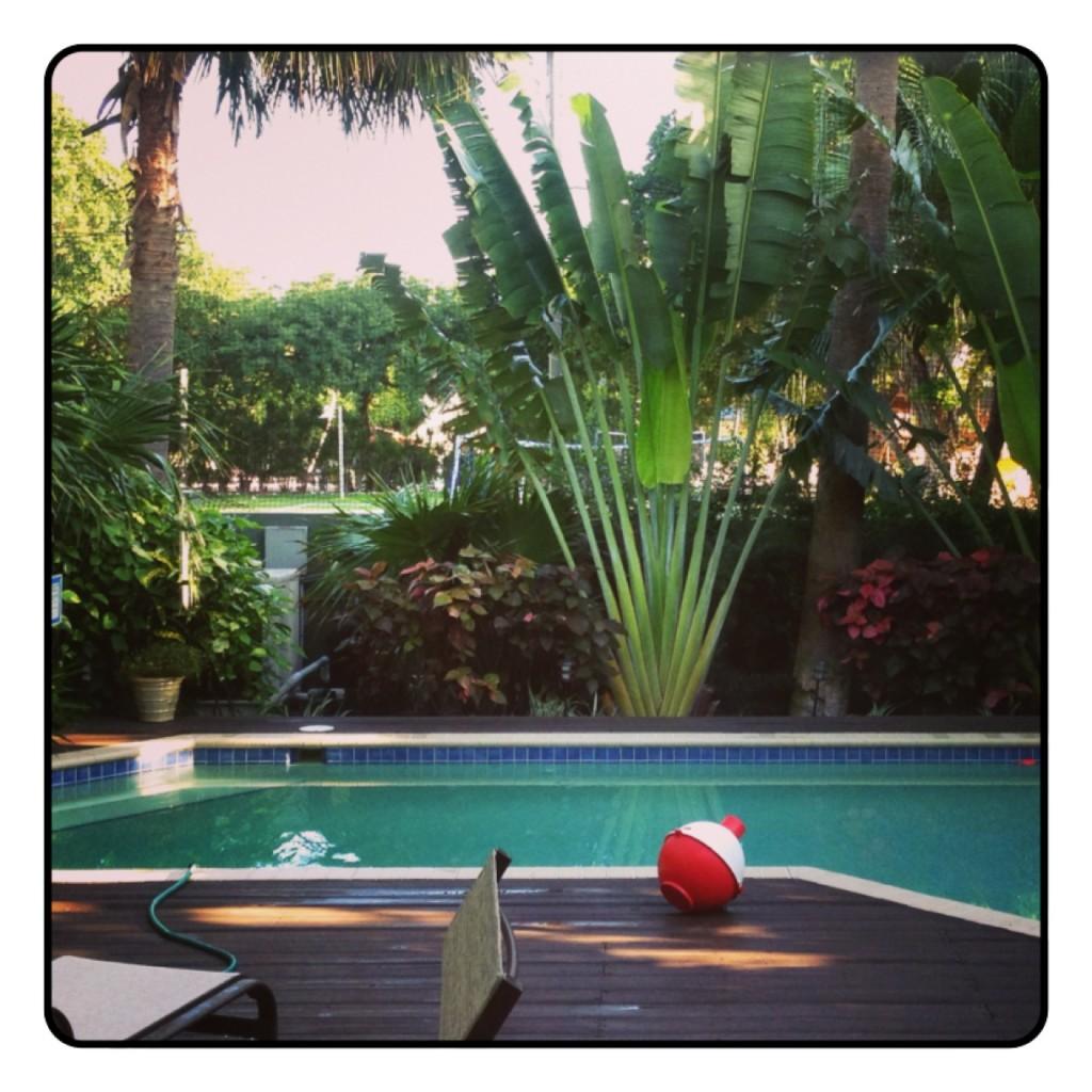 Summer fun Pool