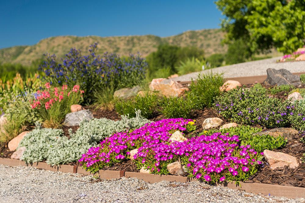 Plant Select® Garden