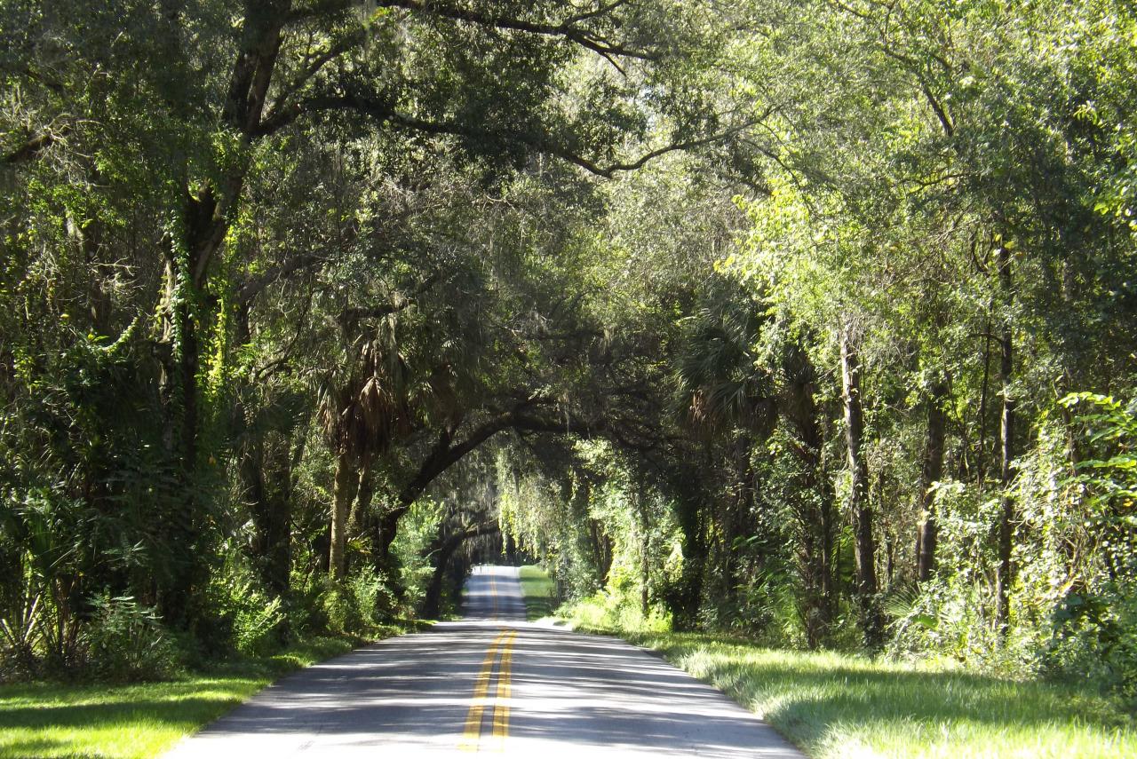 Old Florida City Road